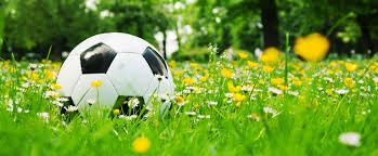Panduan Memahami Handicap & Taruhan Bola lainnya